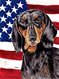 Caroline's Treasures SC9003GF USA American Flag with Dachshund Flag, Small, Multicolor Review