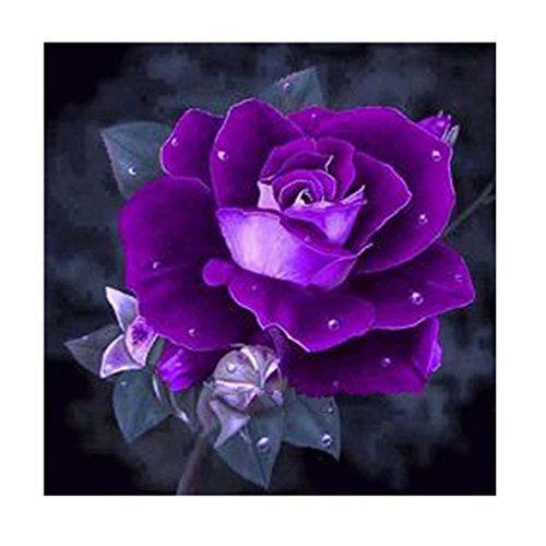 Geyou 5D Diamond Painting by Number Kits Purple Rose Flower Stitch DIY Embroidery Diamond Home Decor Gift New,Cross-Stitch Stamped Kits (A)