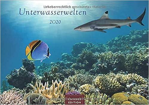 Unterwasserwelten 2020 Format