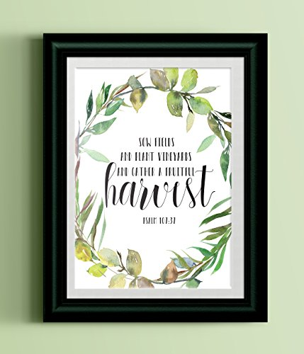 Vineyard Harvest (Scripture Home Print | Sow Fields and Plant Vineyards and Gather a Fruitful Harvest Watercolor Art Print)