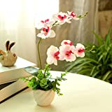 Lopkey Artificial Phaleanopsis Arrangement with Vase Decorative Silk Orchid Flower Bonsai,Red