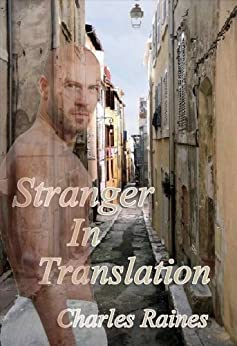 Stranger In Translation by [Raines, Charles]