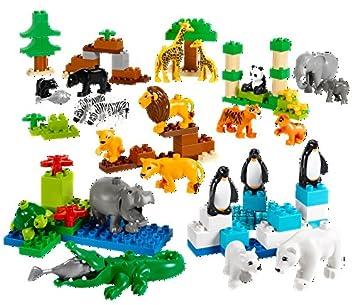 Amazon.com: Wild Animals Set for Understanding Animal Habitats by ...