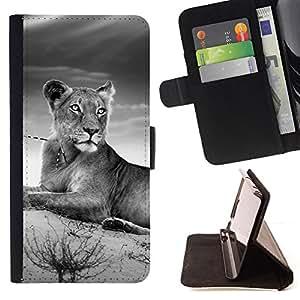 - AFRICA ANIMAL TIGER WILD WHITE BLACK CUB - - Prima caja de la PU billetera de cuero con ranuras para tarjetas, efectivo desmontable correa para l Funny HouseFOR HTC One M8