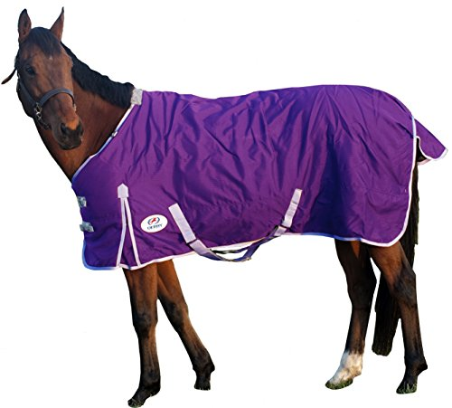 Derby Originals 600D Deluxe Turnout Winter Blanket Waterproof,  Insulated, Lined & Breathable Full Horse Sizes, Purple, 75