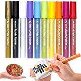 Acrylic Paint Pens for Rocks Painting - Medium-Tip, Water-Based, Permanent Paint Art Markers for Ceramic, Glass, Wood, Fabric, Canvas, Mugs, DIY Craft Making Supplies, 10 Colors/Set