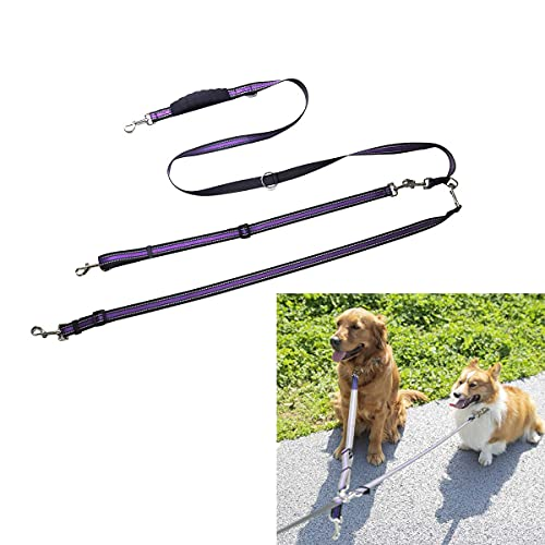 Great dog walking lead