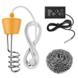 2500W 220V Floating Water Heater Element for Bathtub Swimming Pool with Thermometer