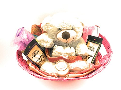 Teddy Bear Gift Basket Pre Made Basket With Tote Bag Plush Teddy Bear Bath Salt Scented Candle Bath Sponge Body Sponge Bath Soap Petals Pre-Made Basket ...  sc 1 st  Desertcart & Teddy Bear Gift Basket Pre Made Basket With Tote Bag Plush Teddy ...