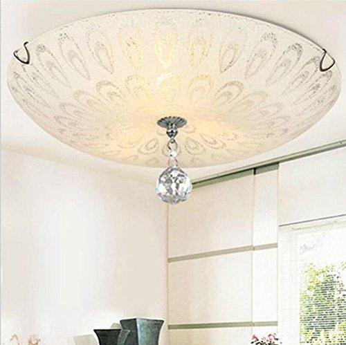 - TUNBG AC110/220V 2E27 LED 12W Ceiling led Crystal Glass lamp/Bedroom Living Room Round Modern Pendant Lights ,D300/400(mm), 40CM