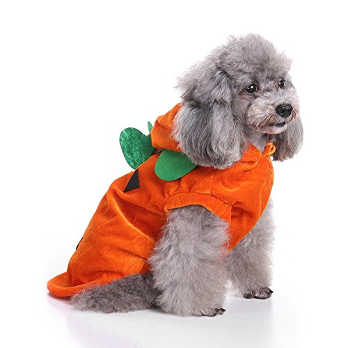QIEKENAO Halloween Fleece Pumpkin Costume for Dogs Fancy Jumpsuit Cozy Sweatshirt Pet Party Clothes (Small) by QIEKENAO