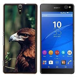 YiPhone /// Prima de resorte delgada de la cubierta del caso de Shell Armor - verano águila rama verde naturaleza marrón - Sony Xperia C5 Ultra