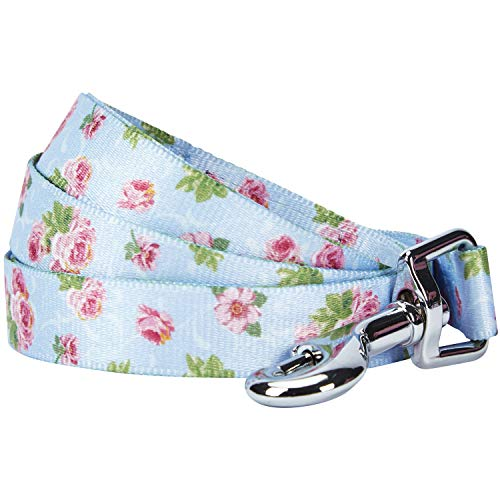 - Blueberry Pet Durable Spring Scent Inspired Rose Blossom Floral Print Pastel Blue Dog Leash 5 ft x 3/4