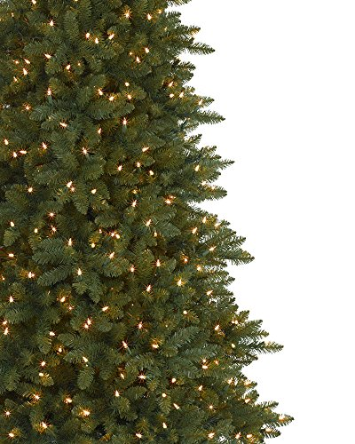 Balsam Hill Berkshire Mountain Fir Prelit Artificial Christmas Tree, 9 Feet, Clear Lights by Balsam Hill (Image #1)