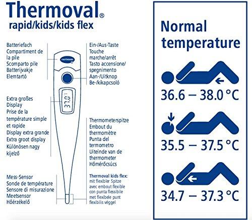 Braun IRT6520 - Termómetro de oído, pantalla LCD, color blanco + THERMOVAL Termometro KIDS FLEX Termómetro digital rápido y sencillo, mide la temperatura en ...
