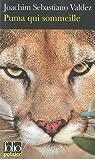 Puma qui sommeille par Valdez