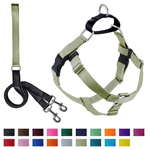 2 Hounds Design Freedom No-Pull Dog Harness and Leash, Adjustable Comfortable Control for Dog Walking, Made in USA (Medium 1
