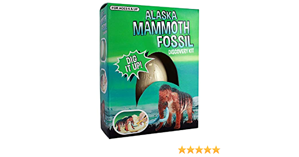 Arctic Circle Alaska Mammoth Egg Fossil Excavation kit Toy Novelty Educational