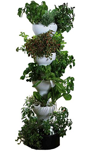 Foody 8 Vertical Hydroponic Home Garden - Enjoy Fresh Herbs, Vegetables, Edible Flowers All Year Long - Indoor/Outdoor by Foody Vertical Gardens