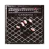 Gardenia: Iii [CD] by Gardenia