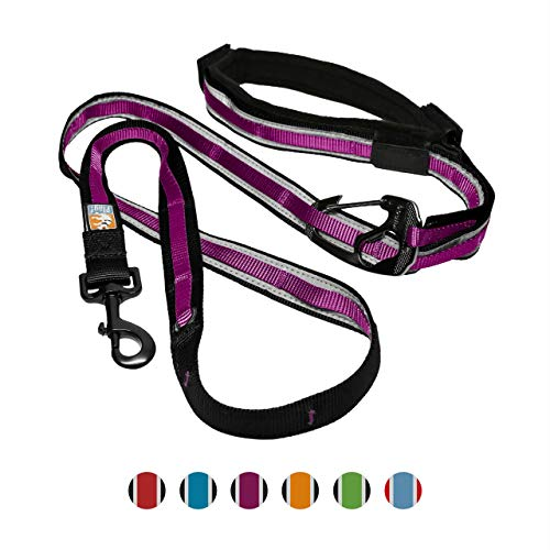 Kurgo 6 In 1 Quantum Dog Leash | Multi-Functional Hands Free Leash for Dogs | Reflective & Adjustable 6' Lead | Dog Waist Running Belt | Padded Handle | for Training, Hiking, Or Jogging | Raspberry (Best Training For Hiking)