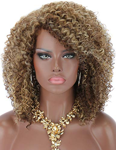 Kalyss Synthetic Brown Blonde Highlights Afro Kinky Curly Wigs for Black Women L- Shape Parting Natural Looking Daily Wear Hair Wigs