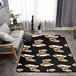 NiYoung Area Rugs for Boys Girls Room Bedroom Non-Slip Kids Carpet Baby Nursery Decor Modern Rug, Rough Collie Dog 6