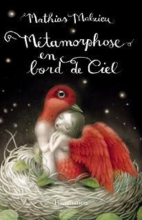 Métamorphose en bord de ciel, Malzieu, Mathias