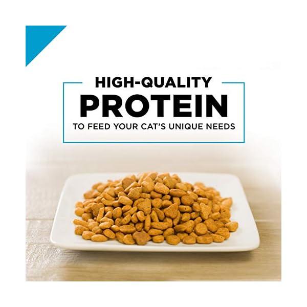 Purina Pro Plan Focus Sensitive Skin & Stomach Adult Dry Cat Food