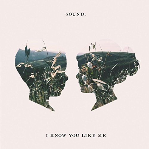 I Know You Like Me - I Like You Know