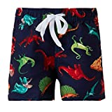ALOOCA Boys Polyester Swim Trunks Cartoon Dinosaur Beach Children Boxers