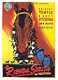 The Story of Seabiscuit POSTER Movie (1949) Spanish Style A 27 x 40 Inches - 69cm x 102cm (Shirley Temple)(Barry Fitzgerald)(Lon McCallister)(Rosemary DeCamp)(Donald MacBride)(Pierre Watkin)(William Forrest)