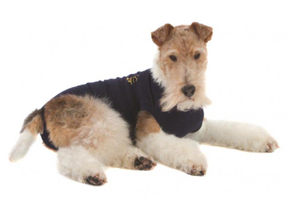 Animal Pet Shirt Small Navy J.A.K Marketing 02-3175