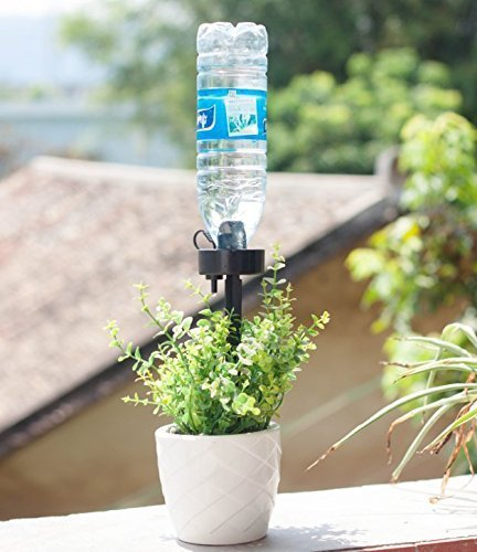DCZTELG Plant Waterer Spikes Devices System Automatic Irrigation for Indoor and Outdoor Your Flower Potted Plants Black 8Pack (Black8) by DCZTELG (Image #7)