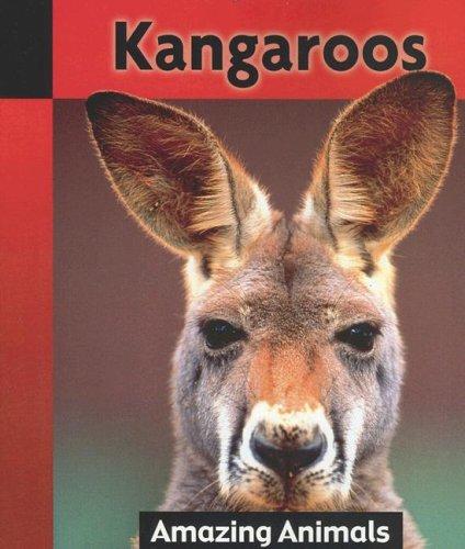 Kangaroos (Amazing Animals)