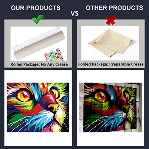 Cat Paint by Numbers for Adults Beginner DIY Acrylic Oil Painting Kits for Kids Child Teen Students on Canvas Painting Art Crafts Projectsfor Home Wall Decoration Drawing Paintwork with 4 Paintbrush