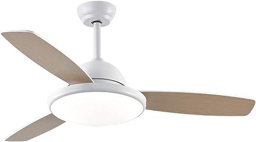 Techo Moderno Ventilador Regulable luz de Techo Ventilador de ...