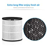 INTEY Air Purifier with True HEPA Filter for