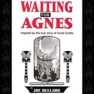 Waiting for Agnes Audiobook