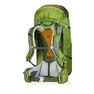 Gregory Mountain Products Zulu 65 Liter Men's Backpack, Moss Green, Medium