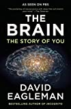 img - for The Brain: The Story of You book / textbook / text book