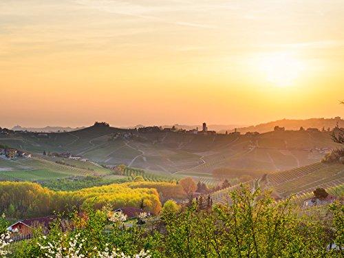 World Vineyard Italian - Piedmont/Lake Iseo