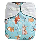 "HappyEndings Charcoal Bamboo AI2TM All-In-Two Cloth Diaper / Snap-in Insert ""Vintage Bunnies"""