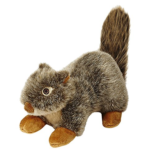 Nuts Squirrel (Fluff and Tuff Nuts the Squirrel)