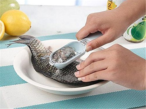 RuiChy Fish Scale Scraper Remover Scale Cleaner Peeler Fish Skinner Fish Server