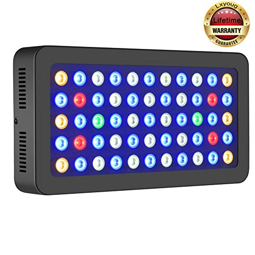 Saltwater Coral Led Lighting in US - 6