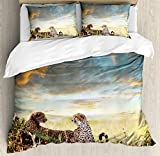 Safari Decor King Size Duvet Cover Set by Ambesonne, Two Cheetahs Africa Nature Grass Dangerous Animals Hunters Rainy Weather Picture, Decorative 3 Piece Bedding Set with 2 Pillow Shams