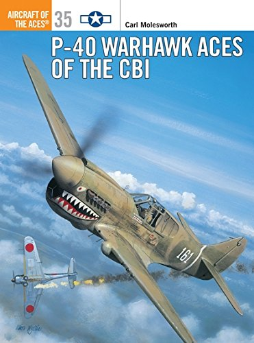Download P-40 Warhawk Aces of the CBI (Osprey Aircraft of the Aces No 35) pdf