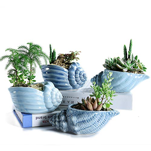 SUN-E 5.5 Inch Blue Conch Ocean Series Ceramic Base Serial Set Succulent Plant Pot Cactus Plant Pot Flower Pot Container Planter with Drainage Hole Idea 4 in Set ()