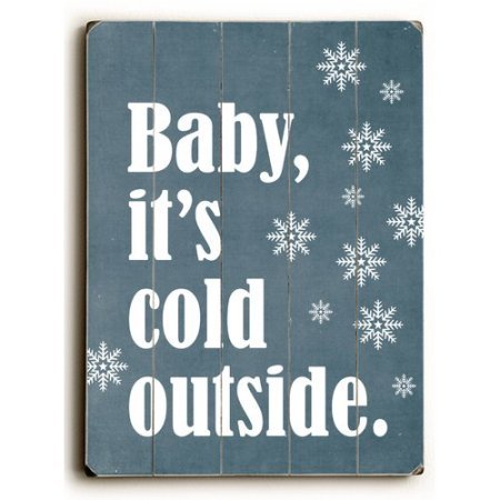 One Bella Casa 0004-4793-32 30 x 40 in. Baby Its Cold Outside Planked Wood Wall Decor by Cheryl Overton by One Bella Casa